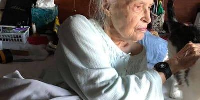 101-letnia babcia traci ukochanego kota. Rodzina wpada na genialny pomysł, aby poprawić jej humor