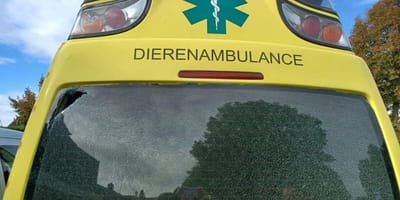 """Dierenambulance in Herpen vernield: """"Een aanslag op de dierenambulance"""""""