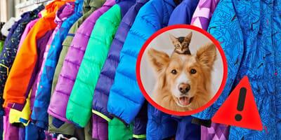 Achtung, wenn das in deiner Winterjacke steht, ist Hunde- oder Katzenfell darin!