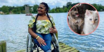 Thuiszorg weigert kattenbak te verschonen van hulpbehoevende Jeanette