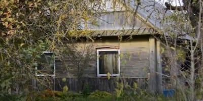 Horrorhaus in Litauen: Als die Helfer eintreffen, fließen Tränen