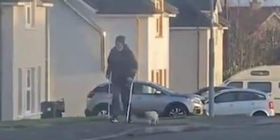 Katze läuft langsam neben Mann: Der Grund sorgt für Gänsehaut!