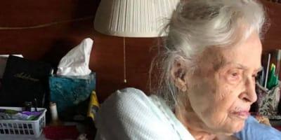 Nonna di 101 anni perde l'amato gatto: la famiglia ha un'idea geniale