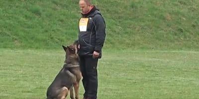 Deutscher trainiert mit Schäferhund: Menschen weltweit voller BEGEISTERUNG!