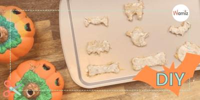 Galletas de Halloween para perros y juguetes hechos en casa