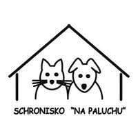 Logo Na Paluchu