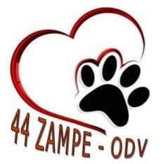 Logo dell'associazione ASSOCIAZIONE 44 ZAMPE - ODV