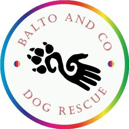 Charity's logo Balto & Co Dog Rescue